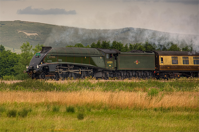 Iron Horse and White Horse - The Cathedrals Express 60019 Bittern 4464