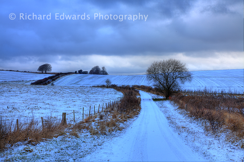 Depths of Winter in Wiltshire